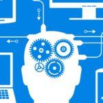 programmer vs software engineer vs developer